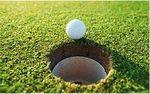 Golf.ball.hole