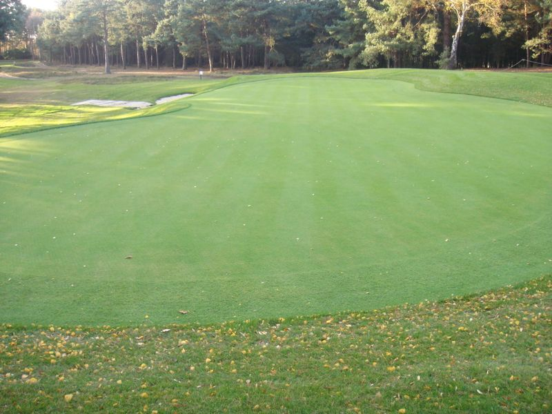 Wentworth 10th Green