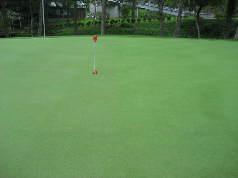 Creeping bent green