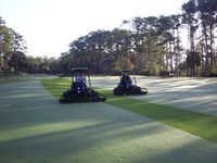 Fairway mowing dew